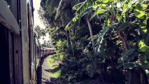 Zugfahrt von Kandy nach Ella Sri Lanka
