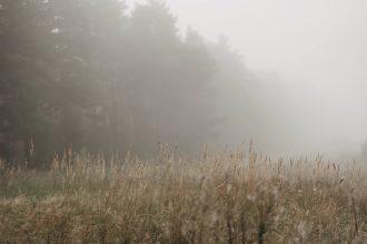 Stille finden Feld Natur